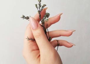 Маникюр на длинные ногти 2021